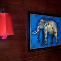elephantdots
