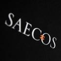 <b>SAECOS</b> - Logo